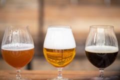 Beer Craft Fest 2018-Samstag-WEB-0095-0811
