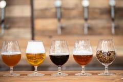 Beer Craft Fest 2018-Samstag-WEB-0097-0811